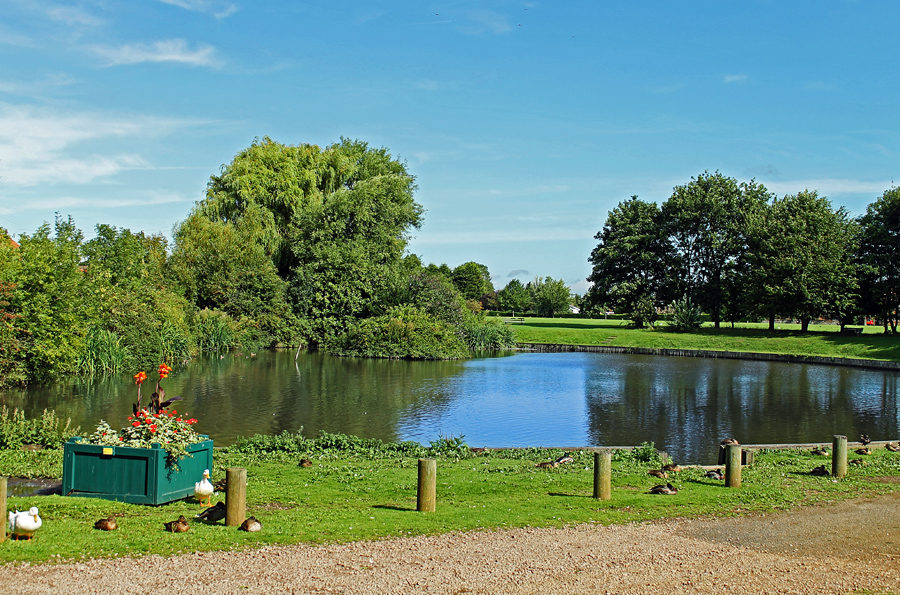 The South Wootton duck pond