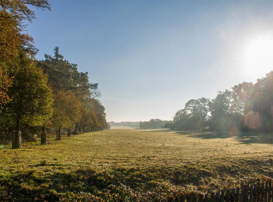 Breathtaking views at Houghton
