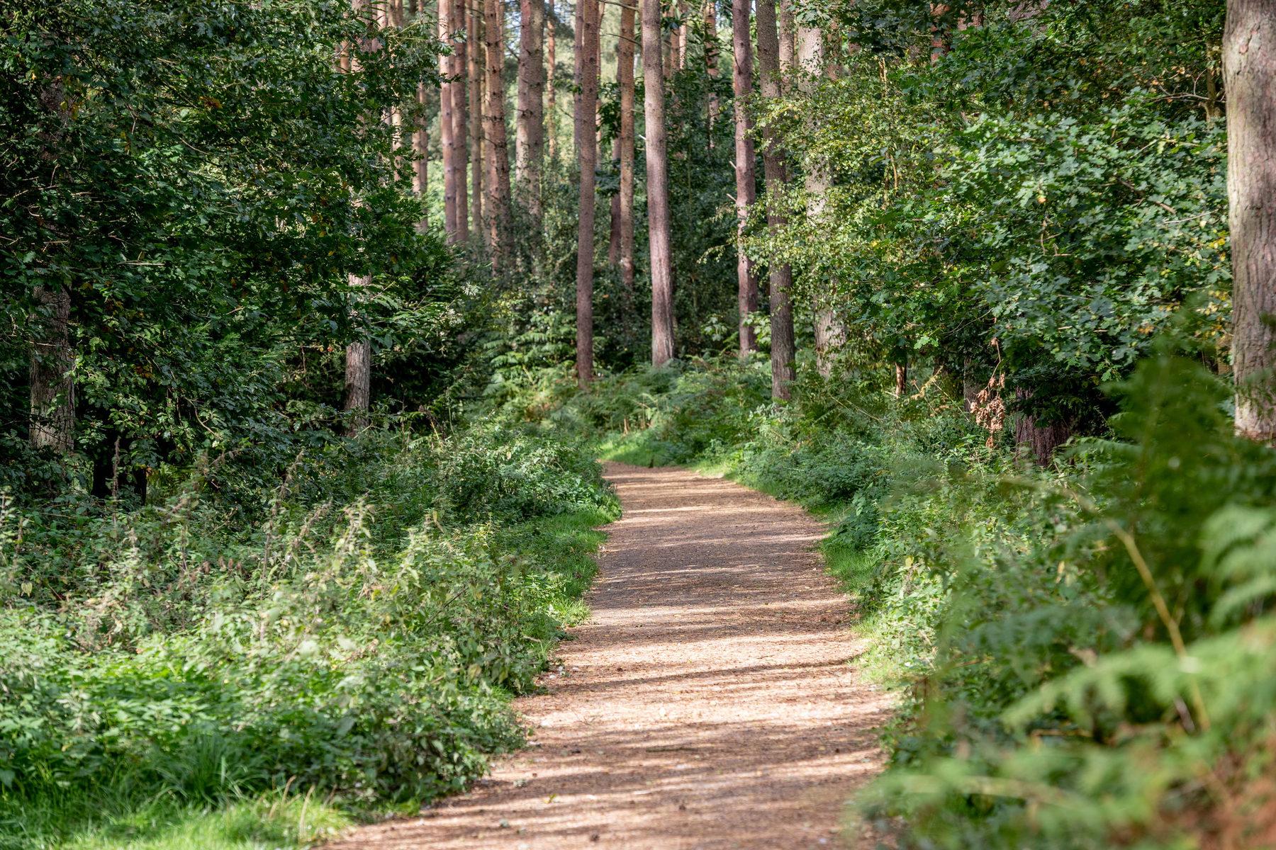 022 Sandringham Trails 2018