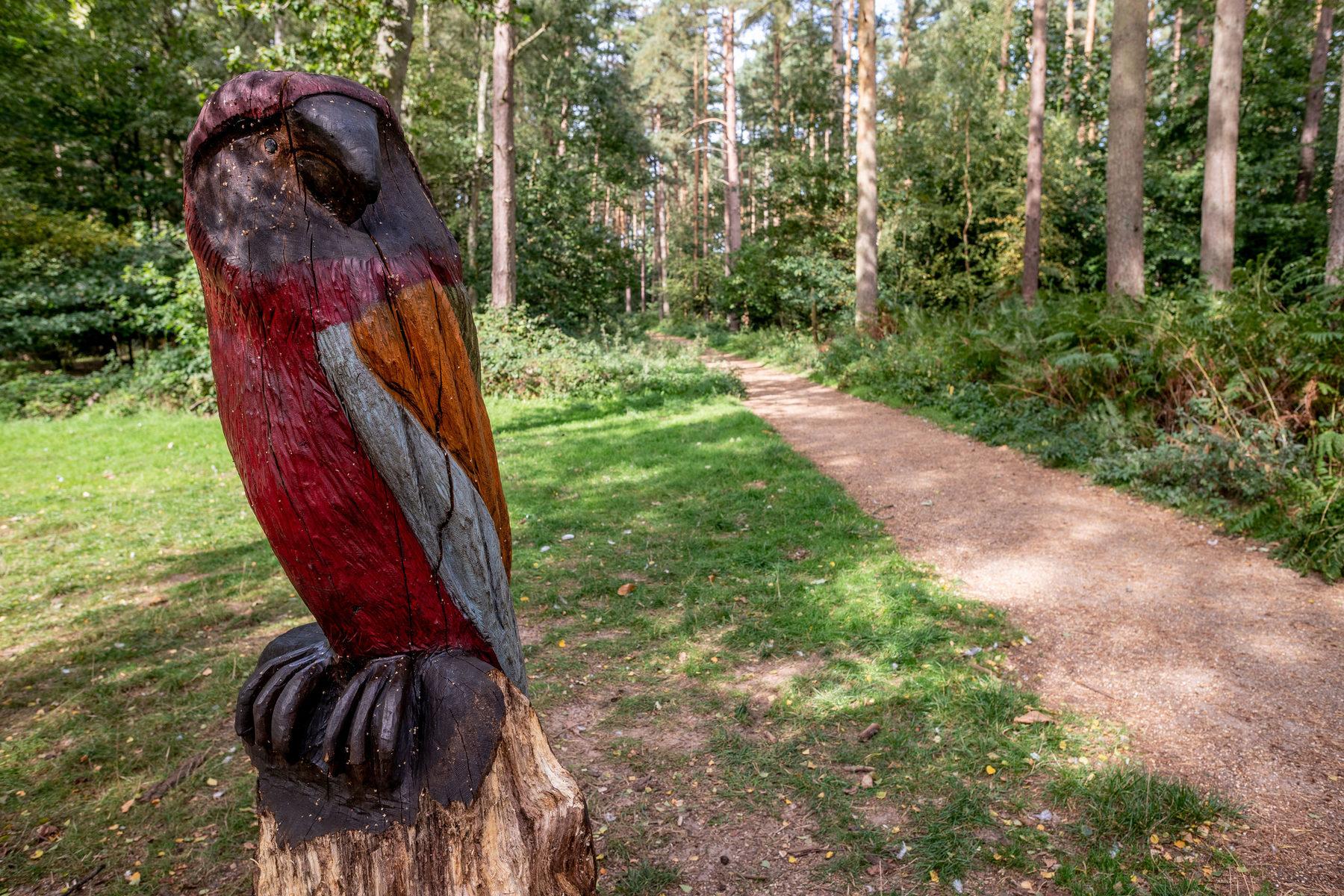 020 Sandringham Trails 2018