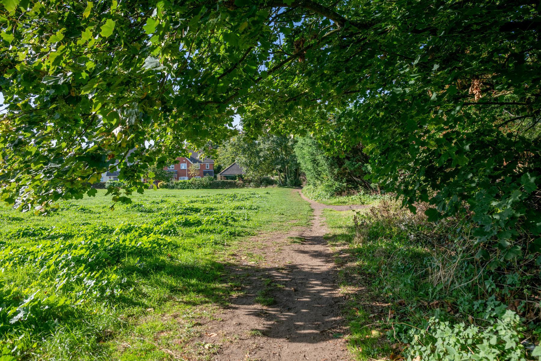 002 Howdale Rabbit Lane 2018